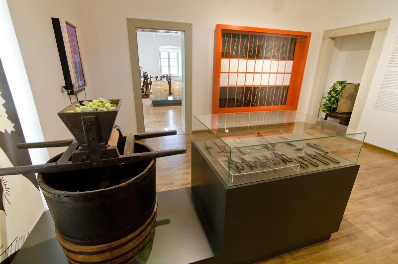 Világörökségi Bormúzeum