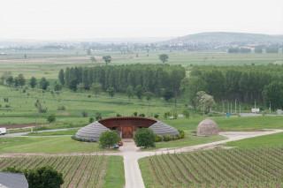 Disznókő Szőlőbirtok és Pincészet, Mezőzombor