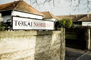 Tokaj Nobilis Szőlőbirtok, Bodrogkeresztúr